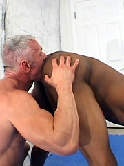 Young black athlete fucks his daddy coach - Gay porn pics at GayStick.com